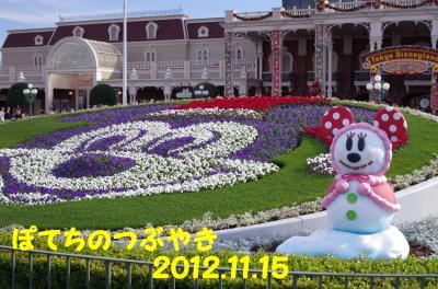 20121115 花壇