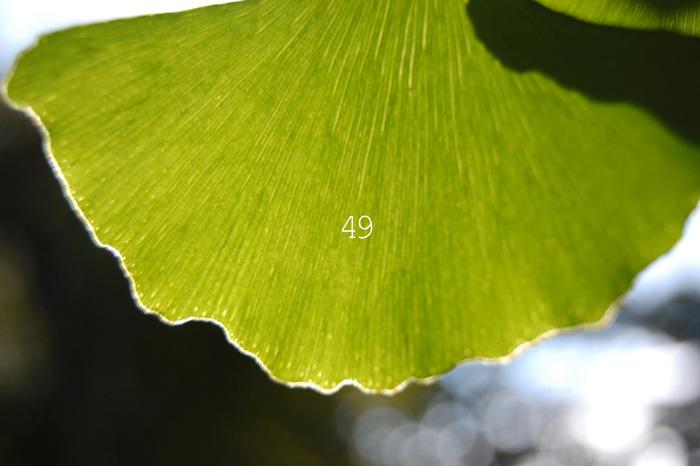 49_20130331183351.jpg