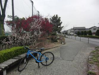 ⑤岡山芳泉高校付近