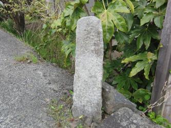 ⑥両宮山古墳3