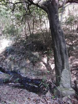 ④太戸の滝3