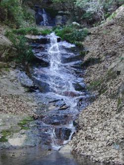 ④太戸の滝2