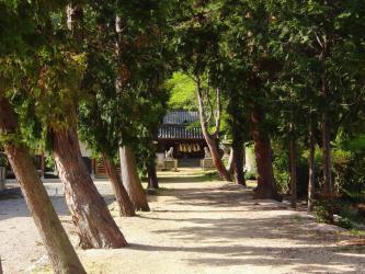 ⑤諏訪神社