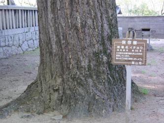 ⑤諏訪神社6