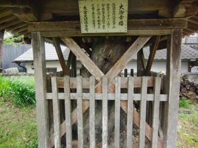 ⑩大宮神社