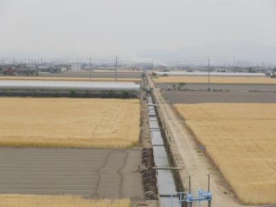 ②広域農道12