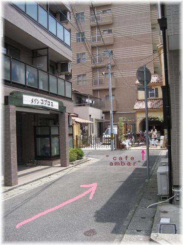 IMG_5573moji.jpg