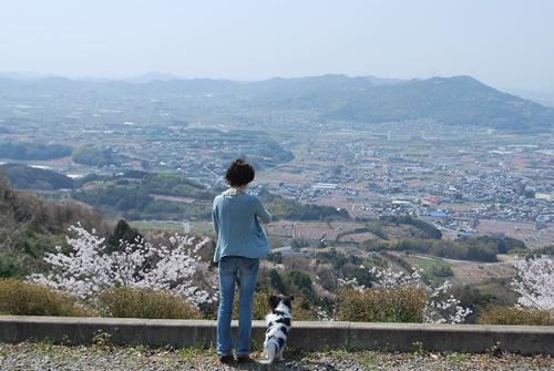 ルビーと桃源郷を見下ろす