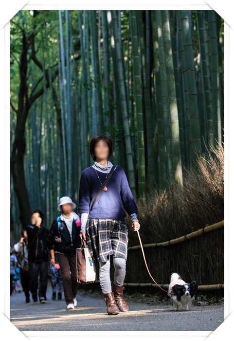 竹林の小道にて