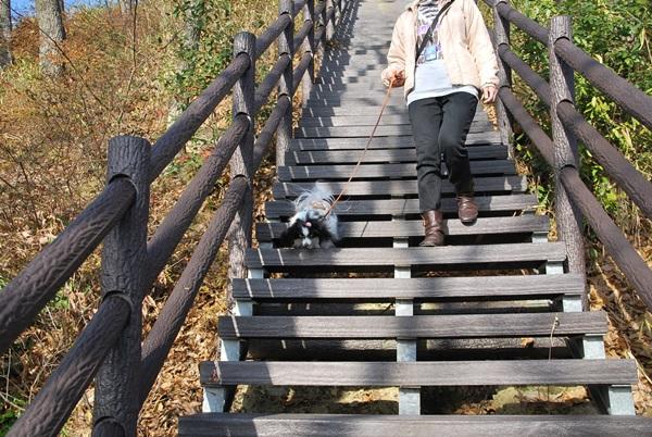 階段を降りる2