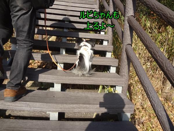 階段上るよ