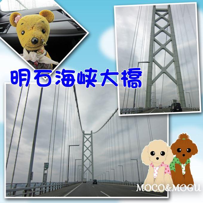 2_20130403225244.jpg