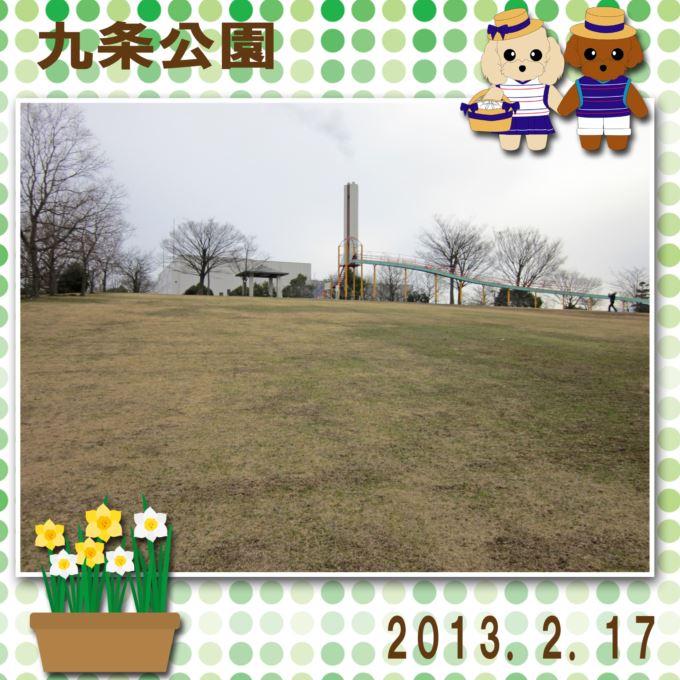40_20130302162548.jpg