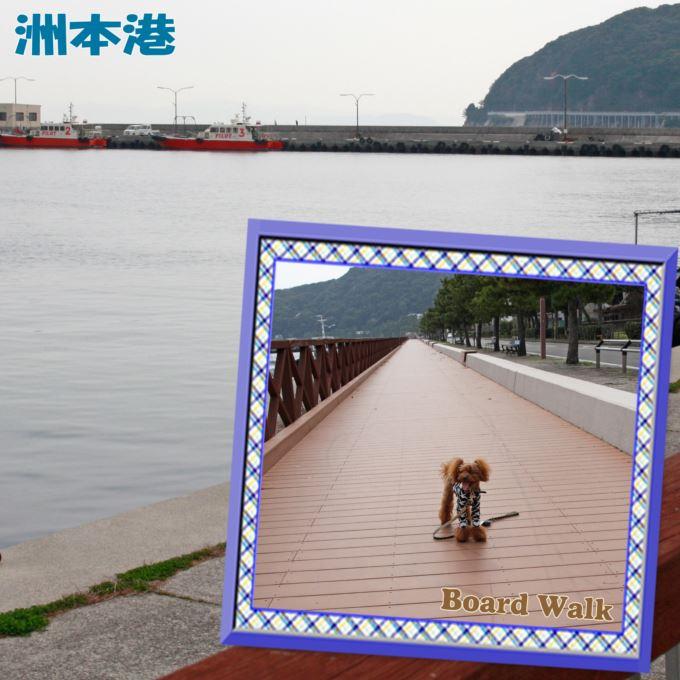 41_20130413201922.jpg