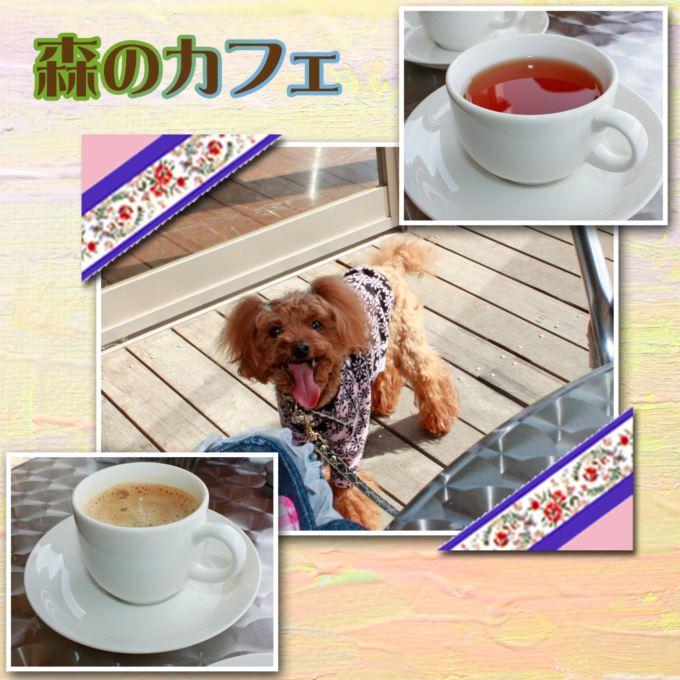 62_20130330132006.jpg