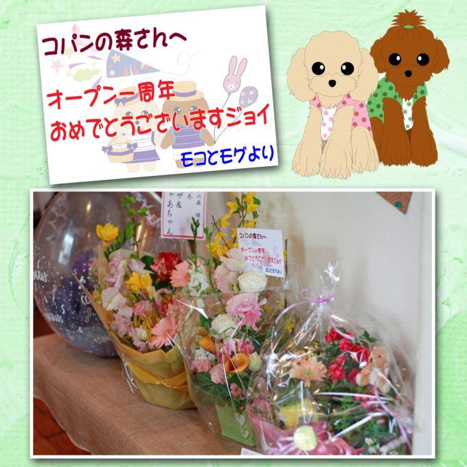 80_20130331205230.jpg