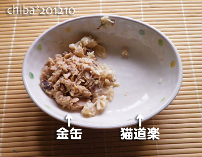 chiba12-10-05.jpg