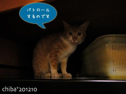 chiba12-10-07.jpg
