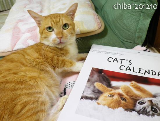 chiba12-10-127.jpg
