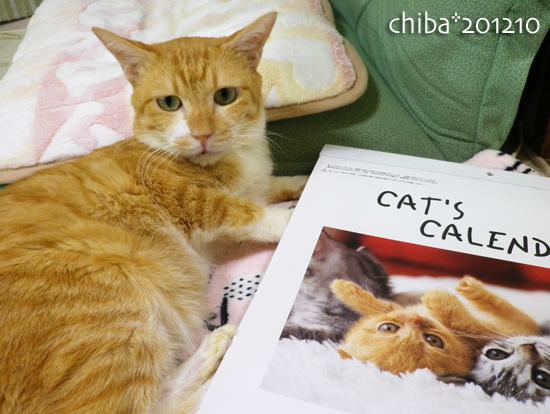 chiba12-10-128.jpg