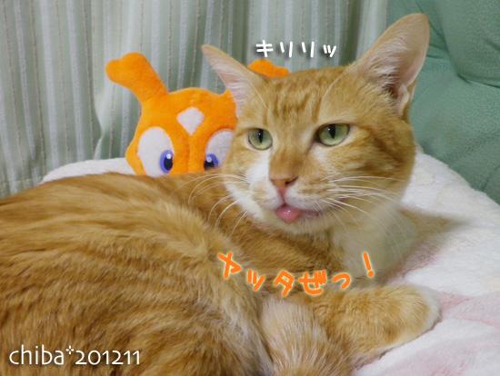 chiba12-11-20.jpg