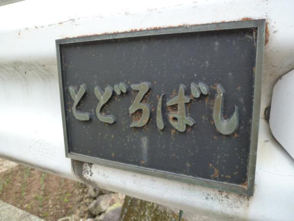 P1030192.jpg