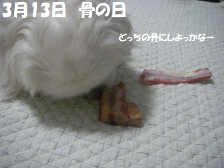 IMGP2019_.jpg