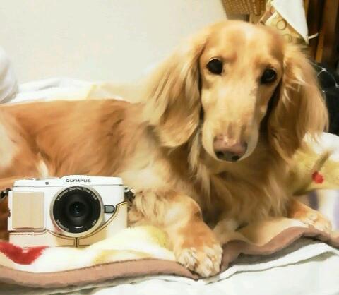 withカメラ2