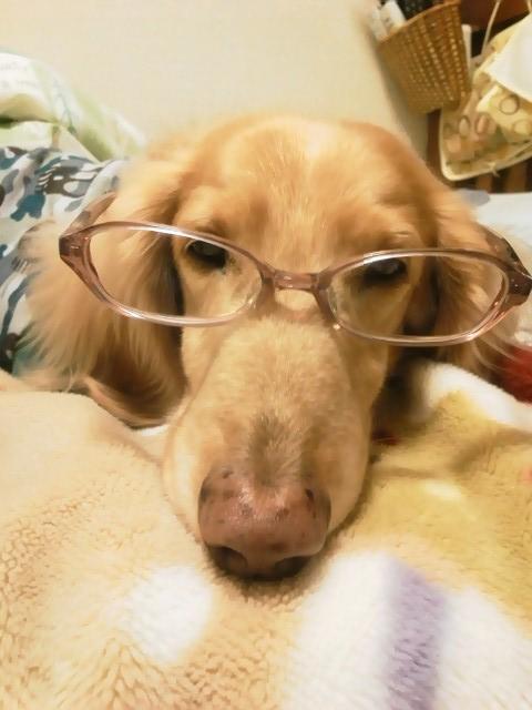 眼鏡男子2