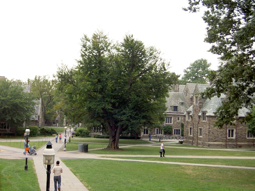 Princeton2_20130527062819.jpg