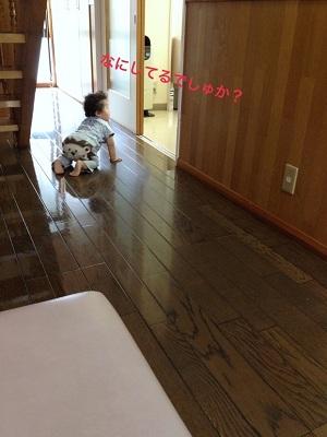 大人の階段3