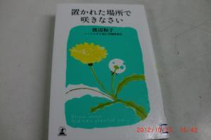 CIMG1099_convert_20121026172943.jpg