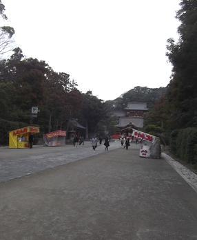 2012246.jpg