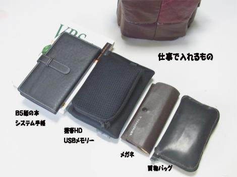 newbag02.jpg