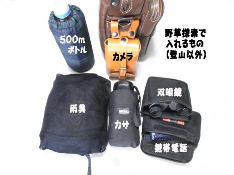 newbag03.jpg