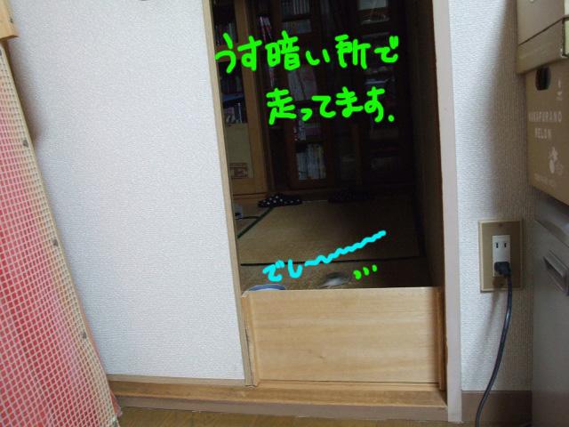 DSCF121105b3479.jpg