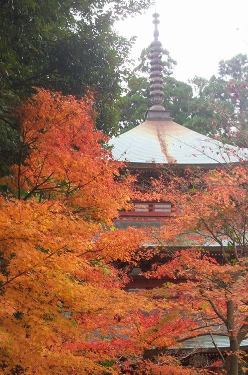 油山寺の秋 3