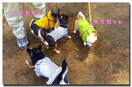 blog20120504c.jpg