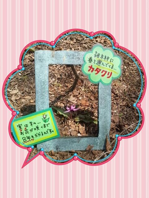 2013-04-16-00-03-30_deco.jpg