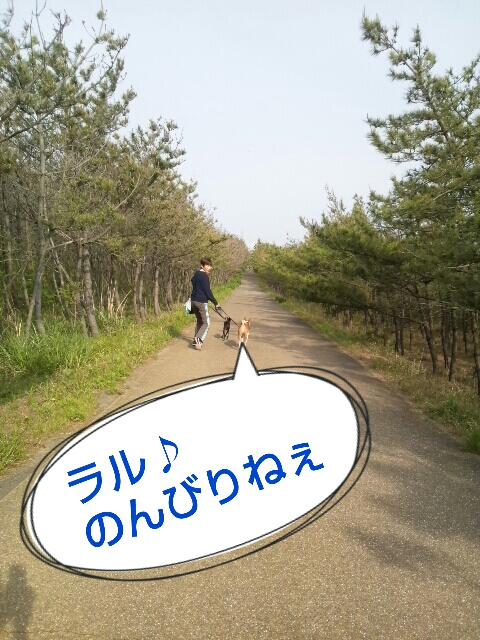 2013-04-30-12-39-04_deco.jpg