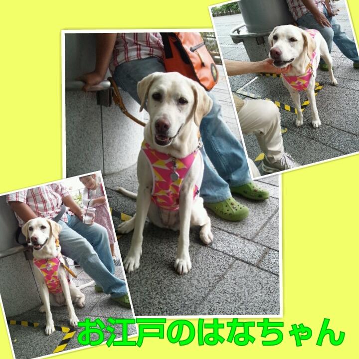 PhotoGrid_1371394771081.jpg