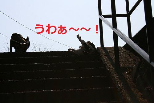 s-IMG_4089.jpg
