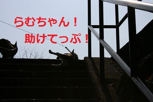 s-IMG_4090.jpg