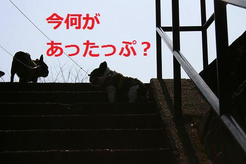 s-IMG_4092.jpg