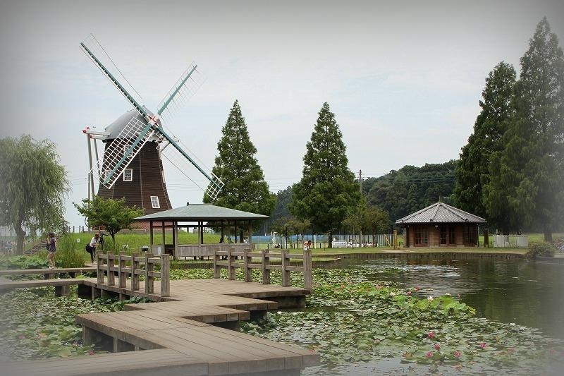 あけぼの山の風車