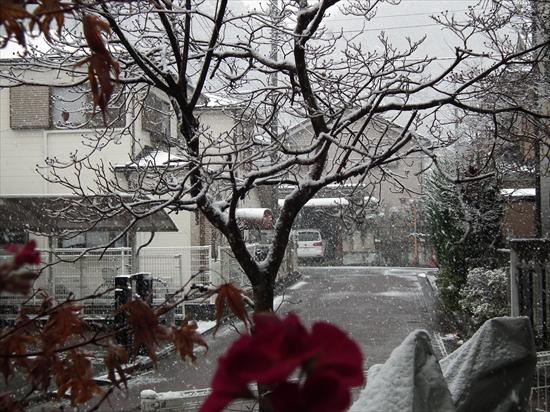 '14初雪 003_R