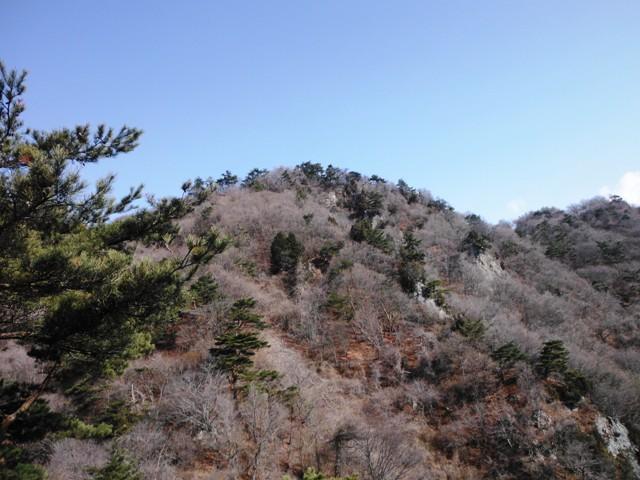積城・亀井城 (10)