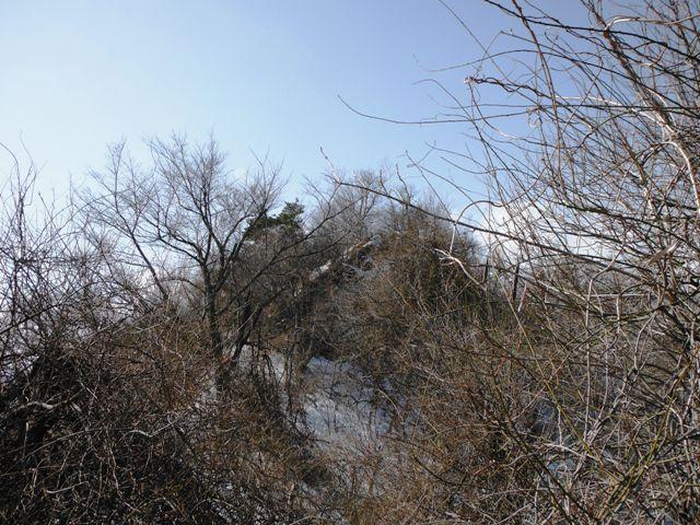 積城・亀井城 (55)