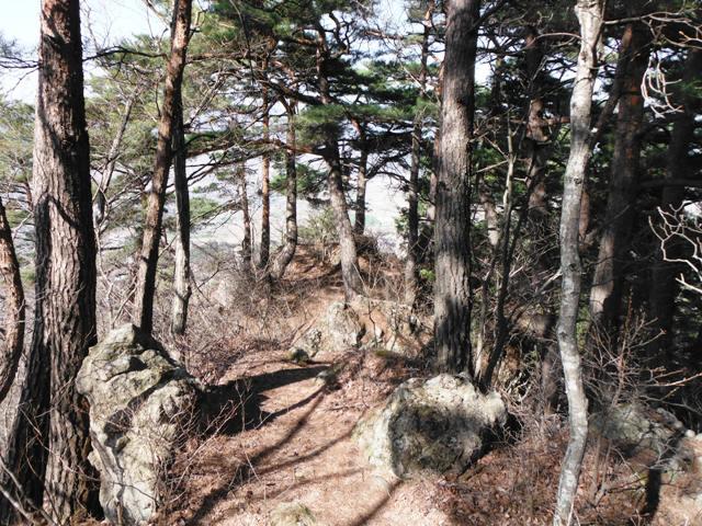 塩田城2 (127)