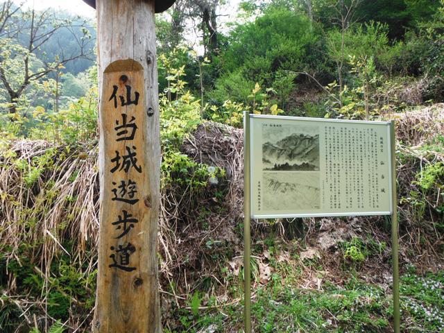 仙当城 (2)